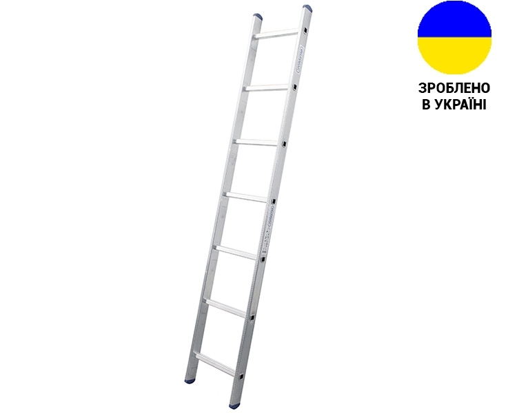 Aluminum single-section ladder UNOMAX VIRASTAR