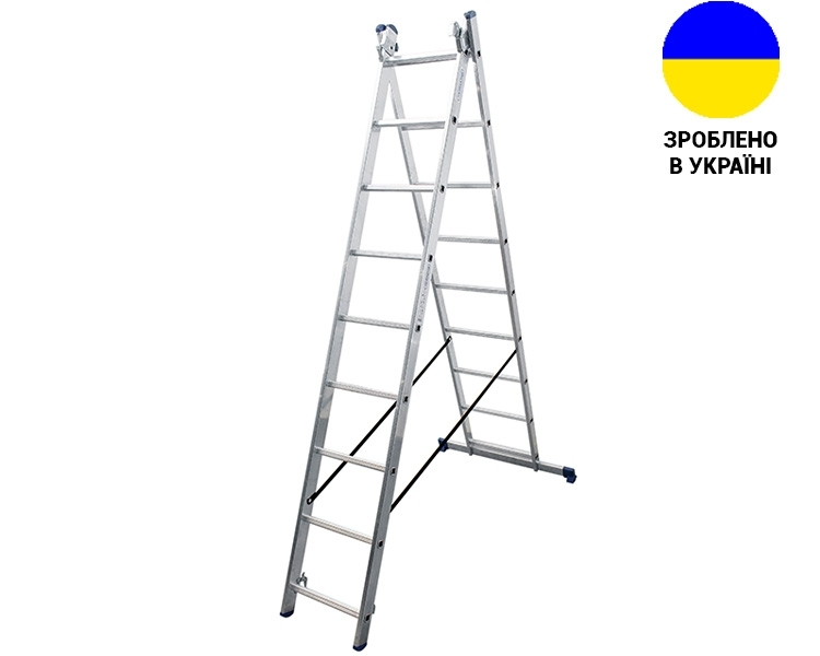 Aluminum two-section ladder DUOMAX VIRASTAR